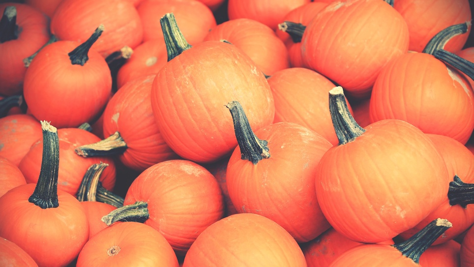 What You Need To Keep In Mind When Planning For Seasonal Marketing Campaigns