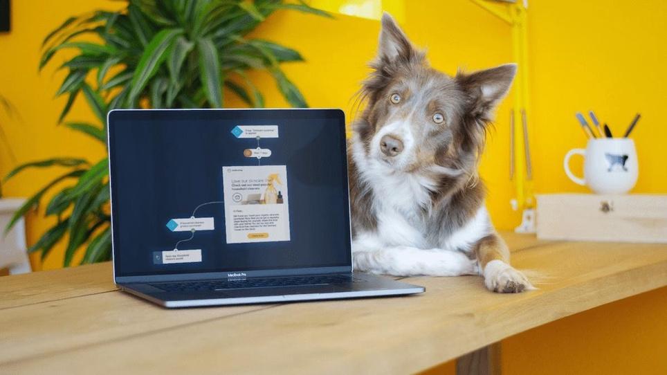 Retail Email Marketing Reinvigorated