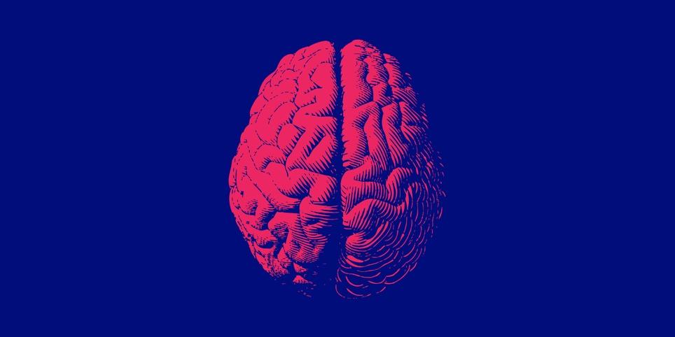 Wewnętrzna wymiana wiedzy